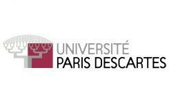 Les Cahiers de l'Université Paris Descartes